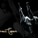 K-Tigers thể hiện tài năng Taekwondo