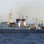 Tàu cá của Nga chìm, 54 người thiệt mạng