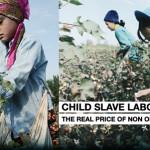 Trung Á-Uzbekistan &Turkmenistan: Nơi Nước Mắt Mồ Hôi Nô Lệ Nhuộm Màu Hoa Những Cánh Đồng Bông Vải