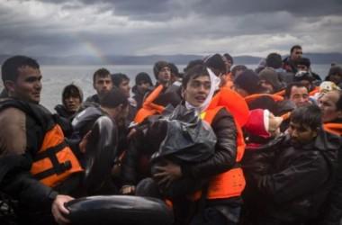 Hơn 38 di dân thiệt mạng trong vụ chìm tàu ở Thổ Nhĩ Kỳ