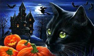 nhung-tiet-lo-bat-ngo-ve-le-hoi-halloween-hinh-4