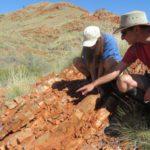 Các nhà khoa học Úc Châu phát hiện sự sống trái đất 3,48 tỉ năm trước