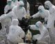 H7N9 bùng phát ở Trung Quốc