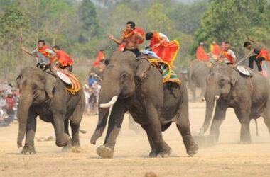 Hội đua voi Buôn Đôn gây tranh cãi