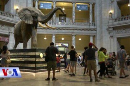 Triển lãm khủng long và động vật cổ đại trở lại thủ đô Washington