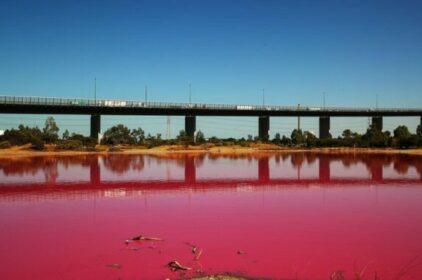 Cảnh báo khách du lịch khi chụp ảnh tại hồ màu hồng ở Melbourne