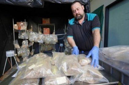 Úc bắt lượng ma túy lớn có thể bào chế 12 triệu viên thuốc lắc