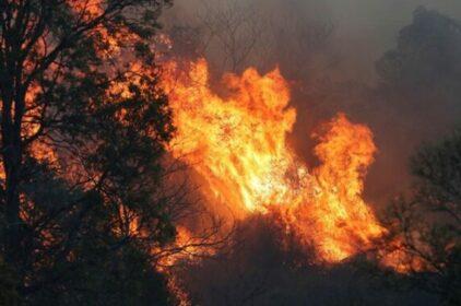 Úc yêu cầu 30.000 người sơ tán vì nạn cháy rừng