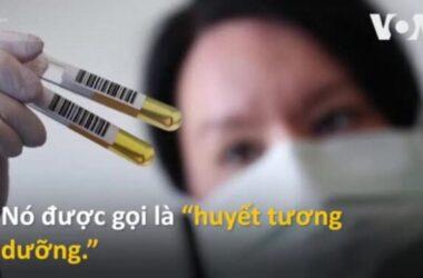 Bác sĩ Mỹ chữa Covid-19 bằng 'huyết tương dưỡng'