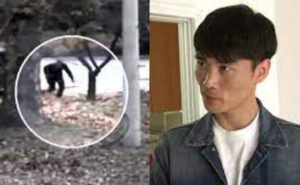 Bắc Hàn – Đại Hàn: Chống Bình Nhưỡng Phản Đối Hàn Thành